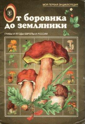 Маталин А.В. - От боровика до земляники (1999) pdf, djvu